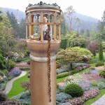 Rapunzel in Tower
