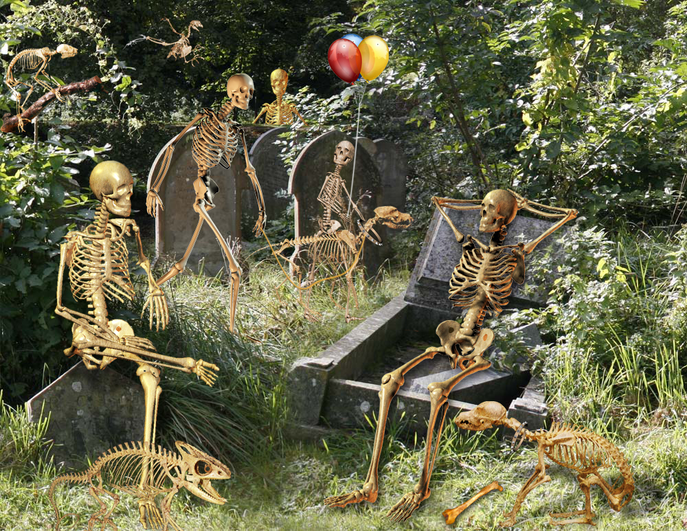 Skeletons chatting