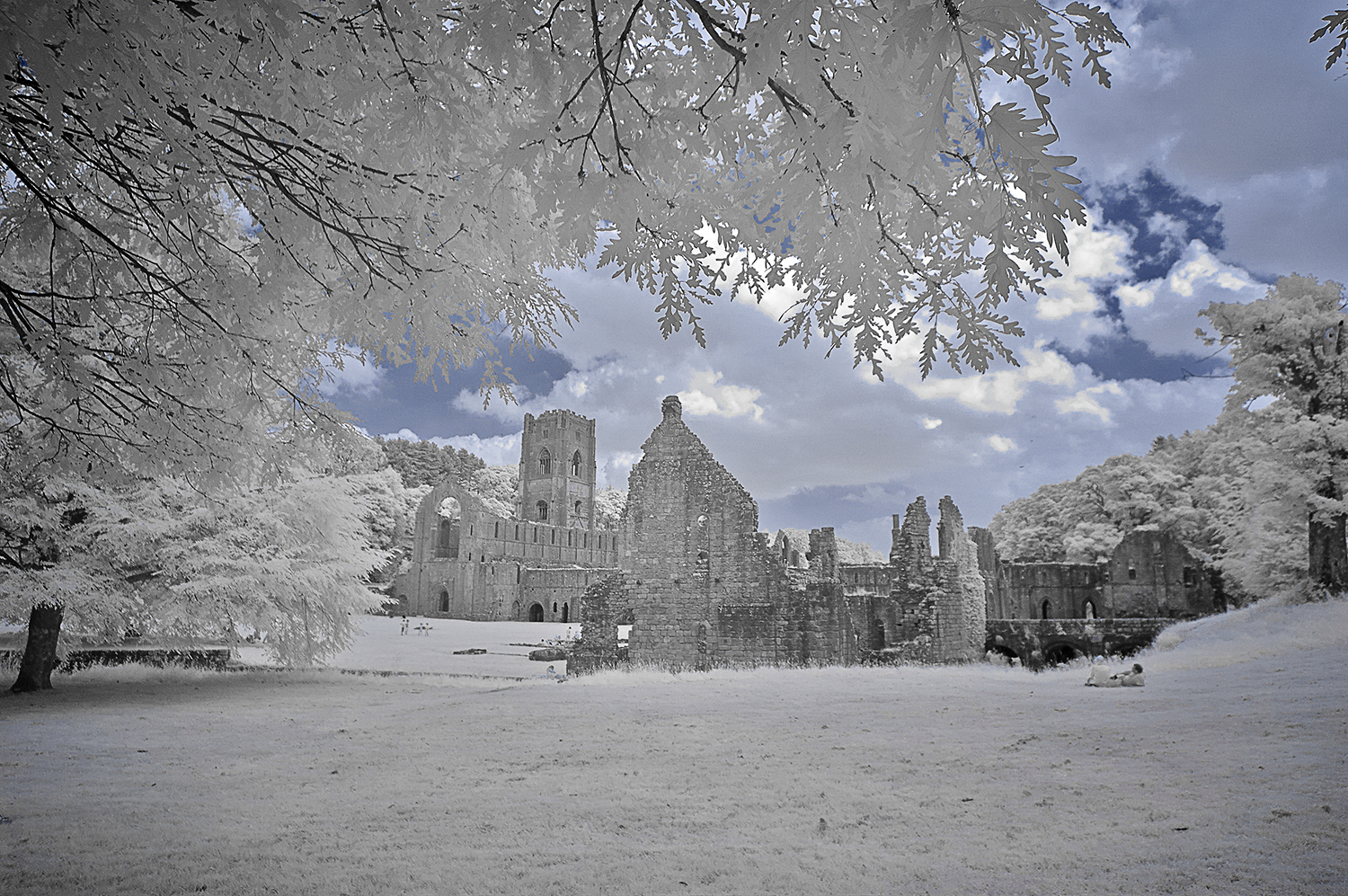 Fountains Abbey 0007