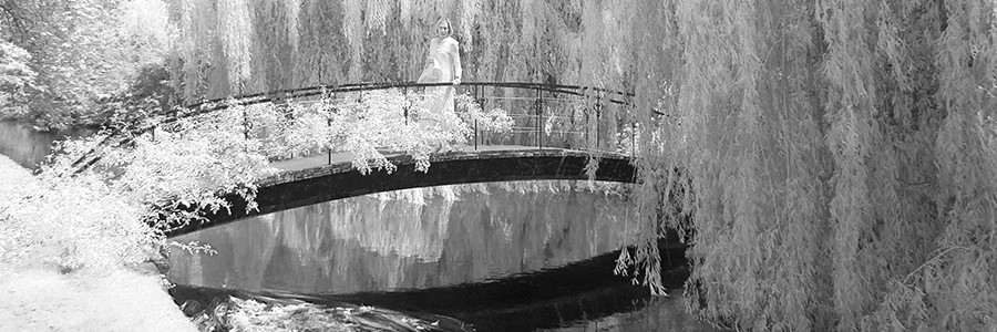 Bridge Mottisfont 0386