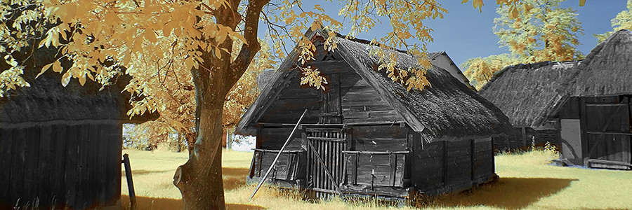 Old wood house 2615 v2