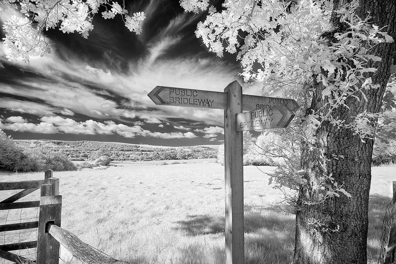 Signpost 2787